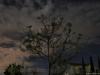 Cielo nocturno en Chilcuautla 4