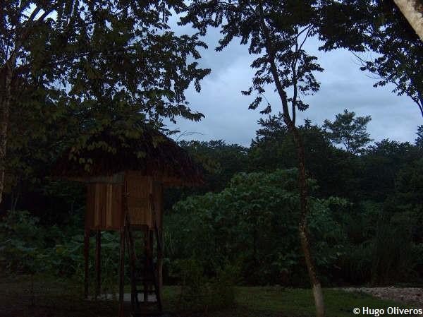 bungalos-en-palenque