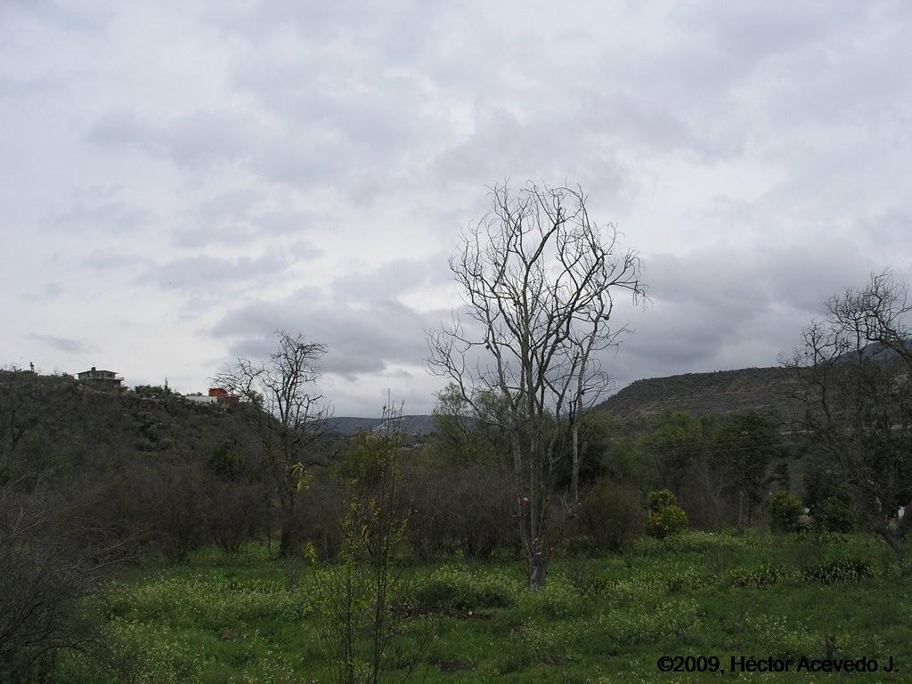 Paisje en Chilcuautla 1