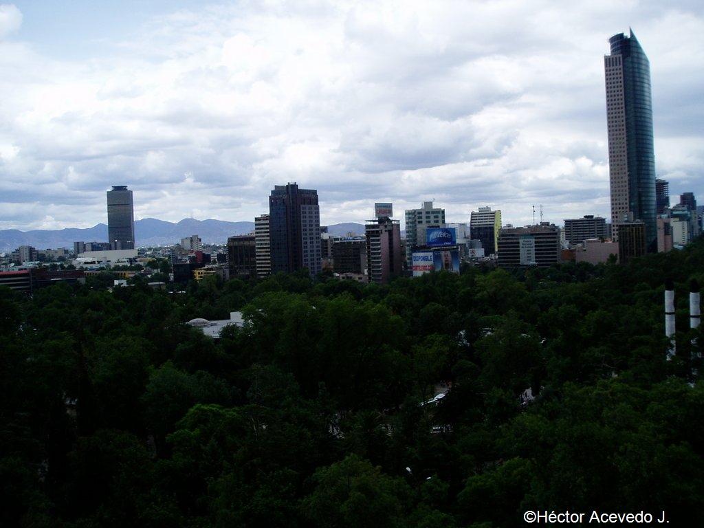Torre Mayor y Torre Pemex desde el Castillo de Chapultepec