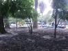 parque15