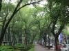 Parque México 2