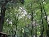 Parque México 8