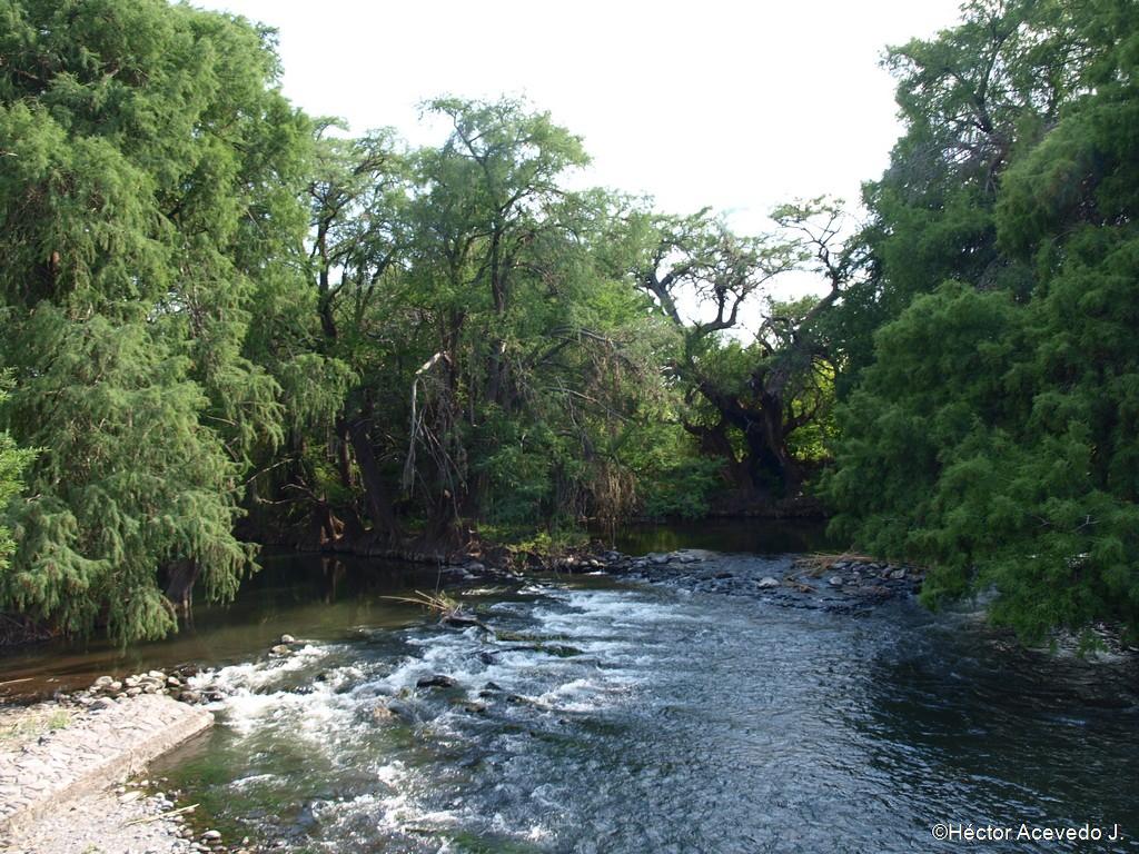 El río Tula a su paso por Tlaco - 4