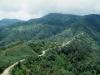 carretera-a-zongolica